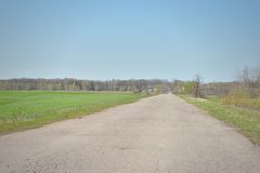 Country road along the field. Stock Photo