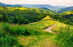 Country road along the hill. Beautiful summer landscape Royalty Free Stock Photo