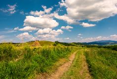 Country road along the hillside. Lovely countryside rural scenery in summer. beautiful blue summer sky with fluffy clouds Royalty Free Stock Photos