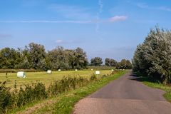 Country road along mown grassland with plastic wrapped bales of. Hay. It is a sunny day with a bright blue sky at the end of the Dutch summer season royalty free stock photos