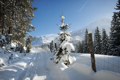 Country road in the Alps. Snowy country road in the Alps Stock Images