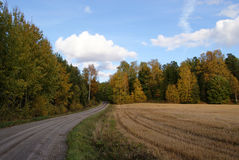 Country Road In Autumn. A dirt road across Finnish countryside in September with autumn colors beginning. Photographed in Salo, Finland Royalty Free Stock Image
