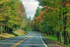 Country Road in Autumn. Two lane country road laced with autum leaves and trees Royalty Free Stock Image