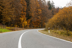Country road. In the autumn Stock Images