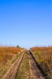 Country road in autumn field blue sky. Country road through the fields. Stock Photo