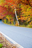Country Road with Autumn Foliage Stock Photo