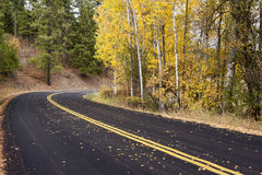 Country road in Autumn. Royalty Free Stock Photo