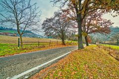 Country road in autumn landscape stock image