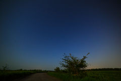 Country road on  background of the starry night sky. Royalty Free Stock Images