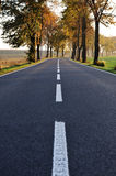Country road, beautiful scene Stock Photography