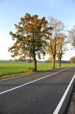Country road, beautiful scene Royalty Free Stock Images