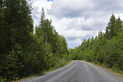 Country road in beautiful wild summer forest Royalty Free Stock Photo