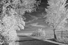 Country road in black and white Stock Photo