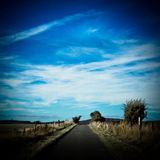 Country road with a blue summer sky Julian Bound Royalty Free Stock Photos