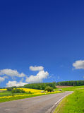 Country road through canola field and blue sky Royalty Free Stock Photography