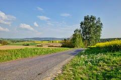 Country road through canola field Stock Photos