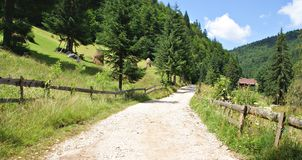 Country Road in Casa de Piatra Village Stock Image