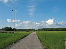 Country road on a clear day. Regular sight in Estonian countryside: dusty road with grass and wheat on both sides royalty free stock photo