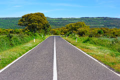 Country road on a clear day Royalty Free Stock Photos