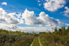 Country road. With clouds on blue sky Royalty Free Stock Image
