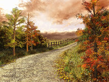 Country road in colorful forest Stock Images