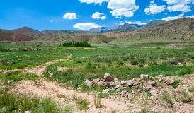 Country road in colorful Tien Shan mountains Royalty Free Stock Images