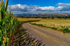 Country road with corn fields and a distant village royalty free stock photography