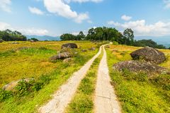 Country road crossing rice paddies Stock Images