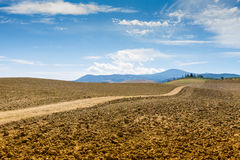 Country Road and cypresses on a hill in Crete Senesi Royalty Free Stock Photo