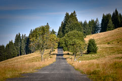 Country Road, Czech Republic Royalty Free Stock Images