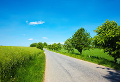 Country road in Denmark Royalty Free Stock Photo