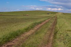 Country road disappearing into the distance. Steppes Of Khakassia. Russia Royalty Free Stock Photo