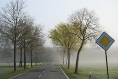 Country road in an endless rural landscape with a row of bare trees. Royalty Free Stock Image