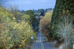 Country road in the fall. Scenic shot of a country road in the fall Royalty Free Stock Photography