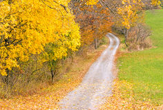 Country road in Fall color Stock Image