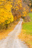 Country road in Fall color. Rural country road in Fall color, upstate New York Stock Photos