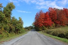 Country Road in Fall. In Eastern Townships, Quebec stock images