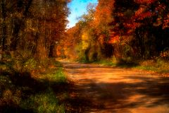 Country Road in Fall stock image
