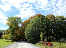 Country Road in Fall royalty free stock image