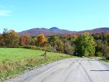 Country Road in Fall royalty free stock photos