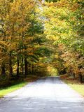 Country Road in Fall. In Eastern Townships, Quebec royalty free stock photography