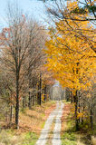Country road  fall foliage. Country road with colorful fall foliage Royalty Free Stock Photography