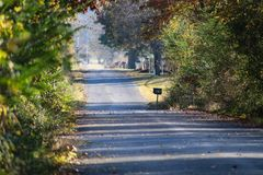 Country road in the fall with leaves blowing across the road and mailboxes - selective focus. A country road in the fall with leaves blowing across the road and Stock Photo