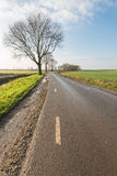 Country road in the fall season. Small country road in an agricultural Dutch polder landscape with some bare trees. It is a sunny day in autumn royalty free stock image