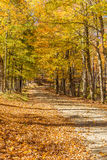 Country road in fall, Vermont. Royalty Free Stock Photos
