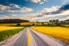 Country road through farm fields and rolling hills in rural York Royalty Free Stock Photos