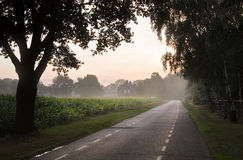 Country road with farm at sunrise. Country road with farm, trees and maize fields at sunrise Stock Photos