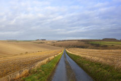 Country road and farmland Royalty Free Stock Photos