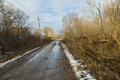 Country road and felled trees in winter time. Royalty Free Stock Image