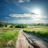 Country road in field with green grass Royalty Free Stock Photos